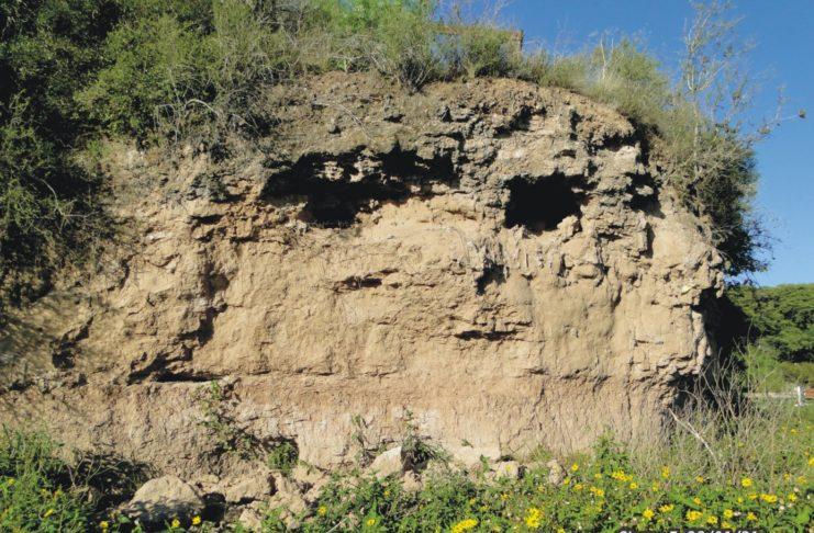 El naturalista Enrique Sierra difundió un informe con imágenes sobre el tema.