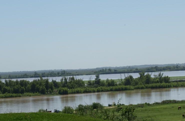 El río frente al puerto, a comienzos de esta semana.
