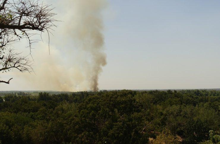 La columna de humo que se veía desde la barranca, en dirección al Paseo Público.