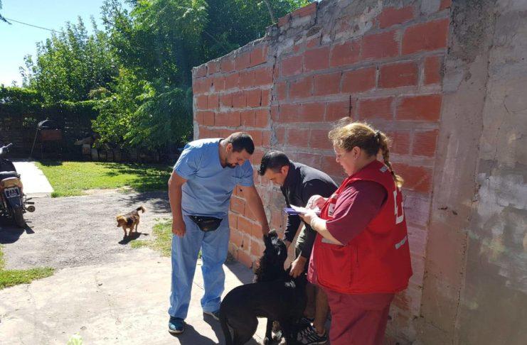 El Departamento canino continúa con la campaña de vacunación antirrábica.