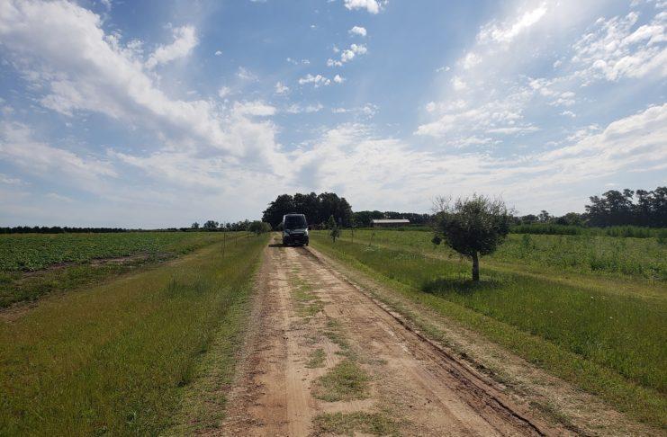 El campo donde operaban los hermanos Loza, detenidos en 2018.