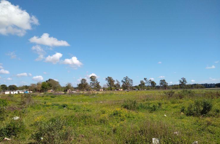 En la zona hay terrenos fiscales y privados que están usurpados.