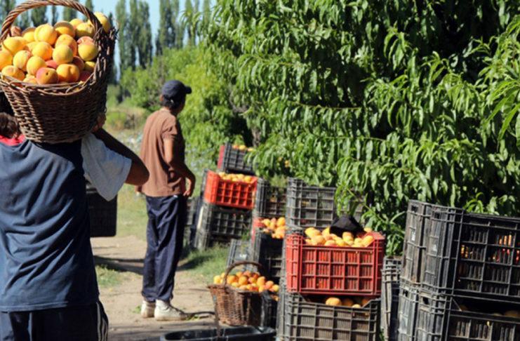 Los trabajadores rurales recibirán un