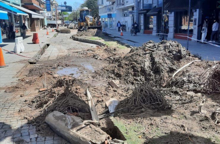 La zona donde estaban las palmeras que fueron trasplantadas en el acceso al Buque Museo.